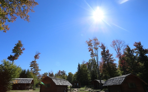 A picture of cabins with trees around them and the sun out in a cloudless sky