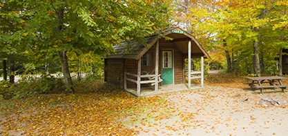 A cottage in the woods at the start of fall with green and yellow trees around it and leaves scattering the ground with a picnic table in front of the cottage