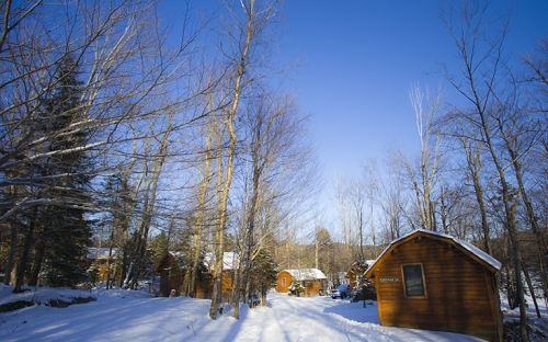 Wooden cottages surrounded by trees in the snow on a cloudless day