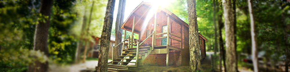 A wooden cottage surrounded by lush greenery and thee sun brightly filtering down