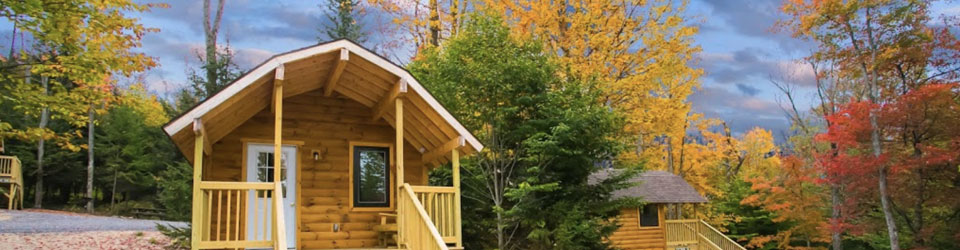 a cabin surrounded by fall foliage