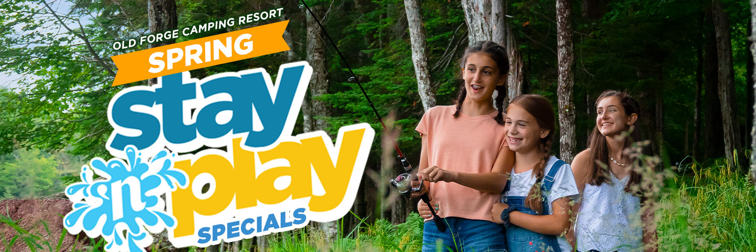 Spring Stay 'N Play Promo Codes